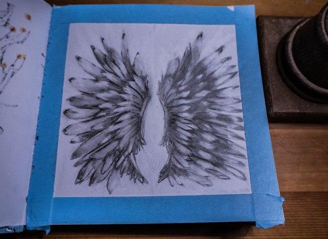 Pencil wings